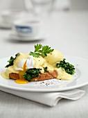 Eggs Benedict auf Toast