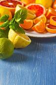 Verschiedene Zitrusfrüchte, ganz und halbiert