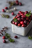 Cranberry in a metal container