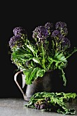Fresh purple broccoli in a mug