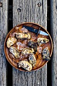 Fresh oysters with ice cubes and an oyster knife on a wooden plate