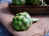 Fresh artichoke on sackcloth