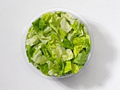 Fresh green lettuce leaves in a plastic bowl in front of a white background (seen from above)