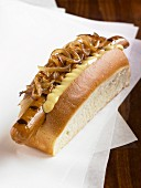 Hotdog with mustard and onions