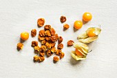 Dried and fresh physalis on a white background (top view)