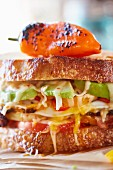 Sandwich with cheese, avocado, tomatoes and peppers (close up)