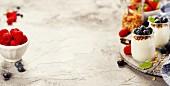 Hausgemachtes Joghurtmüsli mit Nüssen, Trockenfrüchten und frischen Beeren
