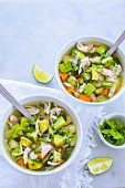 Chicken soup with avocado and carrot (Mexico)