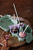 Various cake pops in an egg carton