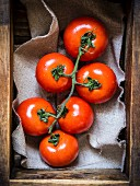 Fresh red tomatoes in a rustic wooden container