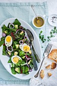 Spinach salad with boiled eggs, onion, avocado and vinaigrette