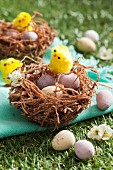 Easter nests with chocolate eggs and Easter chicks on grass