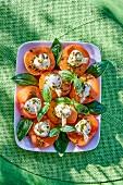 Aprikosenspiesschen mit Mozzarella und Basilikum (Aufsicht)