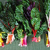 Swiss Chard at a organic farmer's market