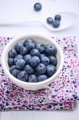 Fresh Blueberries in a White Ceramic Bowl on a Floral Napkin