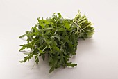 A bunch of fresh rocket