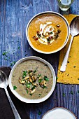 Pumpkin soup and mushroom soup