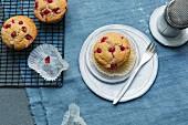Orangen-Zimt-Muffins mit Johannisbeeren (Low Carb)