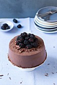 Chocolate and blackberry cake