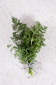 Fresh dill, tied with string, on a marble slab