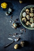 Quail eggs and feathers