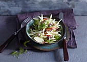 Vegetarian fennel and apple salad with cranberries