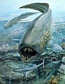 Dunkleosteus hunting sharks, illustration