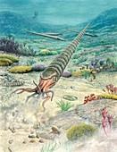 Ordovician marine organisms, illustration
