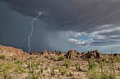 Lightning strike and basalt pinnacles, Arizona, USA