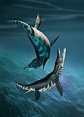Liopleurodon marine reptiles, illustration