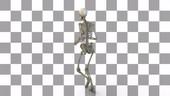 Human skeleton running, rotating animation