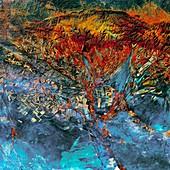 Agricultural landscape in Kazakhstan, satellite image