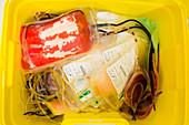 Blood waste