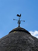 Weather vane on a thatched roof