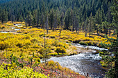 Autumn colours and river, Rocky Mountains, USA
