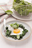 Leaf spinach with a fried egg
