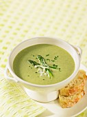 Cream of green asparagus soup