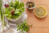 Ingredients for fresh salads