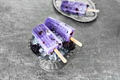 Blackberry ice lollies with fresh blackberries on crushed ice