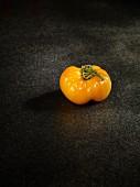 A yellow Sandburg tomato