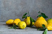 Lemons and ugli fruit