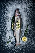 Whole zander with rosemary, salt and lemons