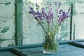 Bunch of lavender in a flower vase