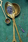 Brass spoon wirh dried lavender blossoms and lavender oil