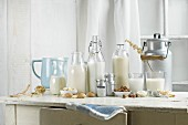 Vegan milk, Soy milk, almond milk, lactose-free, hazelnut milk, rice milk, oak milk