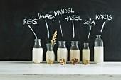 Veganer Milchersatz (Reisdrink, Haferdrink, Mandeldrink, Haselnussdrink, Sojadrink, Kokosmilch)