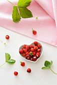 Heart-shaped bowl of wild strawberries
