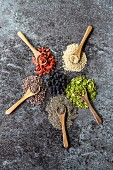Wooden spoons of chokeberries, chia, aronia, quinoa, moringa and wolfberries