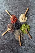 Superfood: Chiasamen, Quinoasamen, Moringablätter, Kakao, Aroniabeeren und Gojibeeren auf Holzlöffel