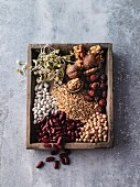 Rich in protein - shoots, nuts, pulses and cereal